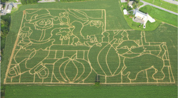 Corn-Maze-Photo1