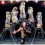 circus hershey